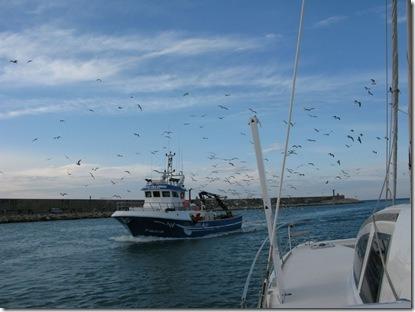 pesquera-de-vinaros1-1024x768