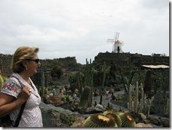 El jardín de cactus (1)