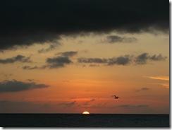 Playmouth Bay (11)