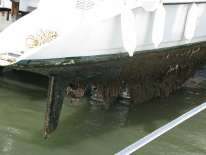 barco-saliendo-al-varadero-1