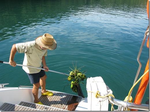 20120628 17'22 01 nueva pesca.jpg
