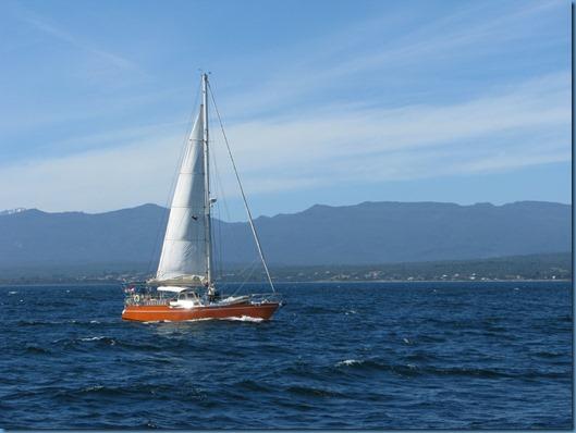 10 Cruce con el velero ALEA(2)
