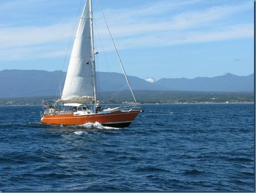 10 Cruce con el velero ALEA(3)