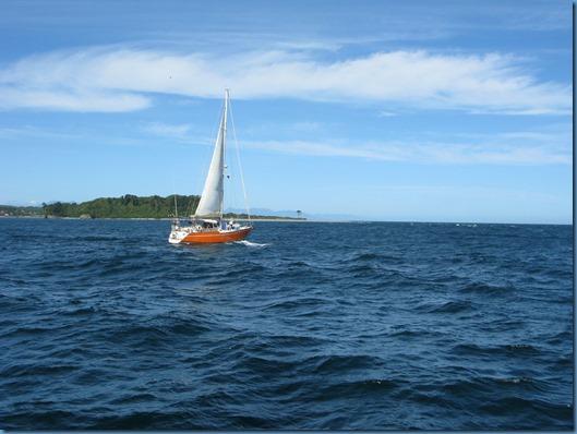 10 Cruce con el velero ALEA(4)