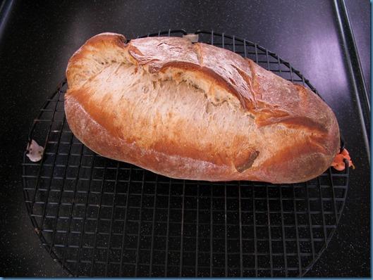09 pan en Coquimbo